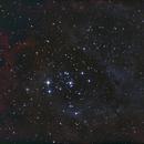 Nébuleuse de la Rosette à l'EQ5,                                Vincent R.
