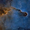 IC1396 - La trompe de Céphée,                                ZlochTeamAstro