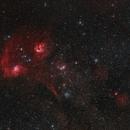 Flaming Star Nebula Region at 135mm,                                Jonathan W MacCollum