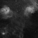 IC 405 Wide Field Narrowband  Flaming Star,                                Caspar Schumann