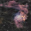 IC 405 Flaming Star,                                Rhett Herring