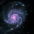 Pinwheel Galaxy M101,                                francopanetta