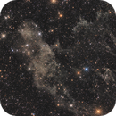 LBN 406, The Laughing Skull Nebula,                                Steed Yu