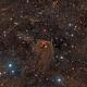 Hind's Variable Nebula NGC 1555,                                Greg Nelson