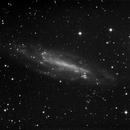 NGC 4236,                                Günther Eder