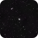 M91 Barred Spiral  in Coma Berenices,                                jerryyyyy