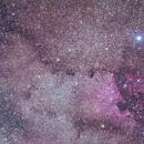 North America Nebula,                                SeSonnen