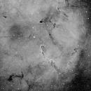 IC 1396 in Halpha,                                Spencer Hurt