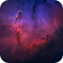Revisiting Elephant's Trunk Nebula,                                Min Xie