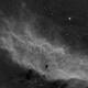 California Nebula,                                José Tapia Janet