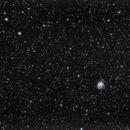 M101,                                Juan Luis Martínez