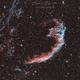 NGC6992,                                Laurent Despontin