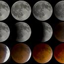Lunar Eclipse Mosaic,                                Jeremy Seals