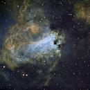 The Swan Nebula - M17,                                Fred Bagni