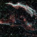 Western Vial Nebula,                                SeanM