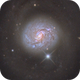 M77 and  sn2018ivc,                                noodle