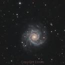 M74 Spiral Galaxy in Pisces,                                Elmiko