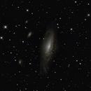 NGC 7331,                                Horst Twele