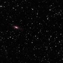 NGC 7331/ Stephans' Quintet,                                MFarq