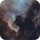 NGC7000,                                David Stadermann