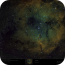 """The """"Ghosts"""" of IC1396 in """"special color"""" to reveal them ...,                                Uwe Deutermann"""