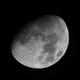 Moon,                                Joe Fox