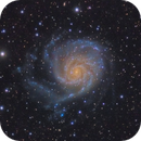 M101 in LRGB,                                Scott