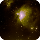 M42, M43 & almost all of the Running Man,                                watcher