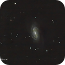 NGC 2903 in Leo,                                Francois Theriault