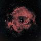 NGC 2244,                                Vijay Vaidyanathan