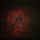 Rosette Nebula -- NGC2237,                                Dan Shallenberger