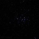 Beehive Cluster M44,                                Scott Findlay
