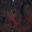 IC1396 Elephant's Trunk Nebula,                                brad_burgess