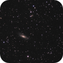 M106 Region,                                Jan Curtis