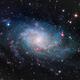M33 - Pinwheel Galaxy,                                Greg Polanski