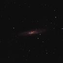 NGC 253,                                Rodolfo Chiaramonte