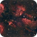 NGC 6334 Cats Paw,                                Rod771