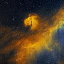 Seagull Nebula,                                David Nguyen