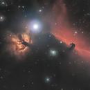 Horsehead and Flame nebula,                                Noah