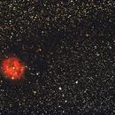 IC5146,                                Gabriele Cicalini