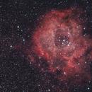 Rosette Nebula @ 420mm,                                Vencislav Krumov
