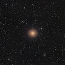 NGC7217 Circular Spiral Galaxy,                                niteman1946