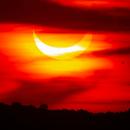 Eclipse (2021),                                Kurt Zeppetello