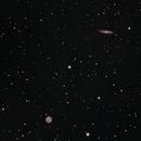 M 97 Owl Nebula and M 108 Surfboard Galaxy,                                gigiastro