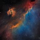 Seagull Nebula (IC2177, Sh2-292)),                                Gary Lopez