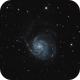 M101,                                David Cheng