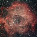 Rosettennebel NGC2244,                                Astromatthi