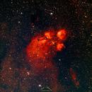 Cats Paw Nebula NGC6334,                                Ivan Hancock