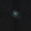 M101,                                Pablo Bravo Saavedra