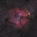 Misty Clover Cluster,                                Keith Hanssen